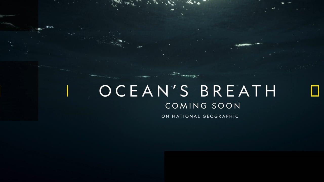 документальный фильм ocean's breath дыхание океана информация дата выхода